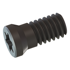 Torx Screw SP1910